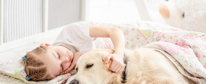 Alvás kutyával macskával